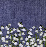 开花在牛仔裤背景的铃兰 安置文本 对设计 在视图之上 背景细部图花卉向量 库存照片