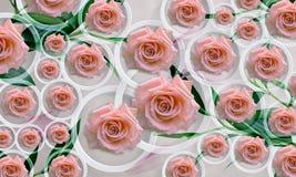 开花在白色背景的玫瑰在圈子 内部的照片墙纸 3d翻译 免版税库存图片