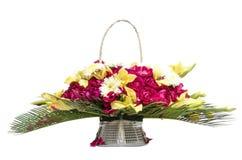 开花在白色背景的篮子礼物 图库摄影