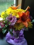 开花在花瓶的花绽放 库存图片
