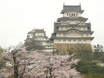 开花城堡樱桃姬路日本春天 免版税图库摄影