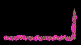 开花增长 皇族释放例证