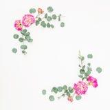 开花干燥花的构成 与桃红色玫瑰和玉树的花卉框架分支 平的位置,顶视图 免版税库存图片