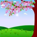 开花开花粉红色 免版税图库摄影