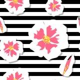 开花无缝樱桃的模式 皇族释放例证
