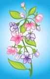 开花束 向量例证