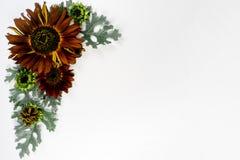 开花构成图象 免版税图库摄影