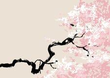 开花樱桃例证向量 库存图片