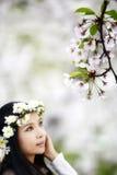 开花樱桃季节 免版税库存图片
