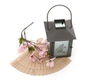 开花樱桃风扇查出的灯笼 免版税库存图片