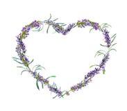 开花淡紫色 水彩花卉心脏框架 库存例证