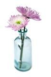 开花玻璃二花瓶 免版税库存照片