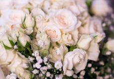 开花白玫瑰玫瑰花束  库存照片