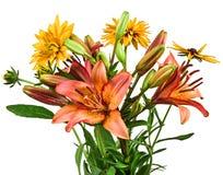 开花百合花束在白色背景的 库存图片
