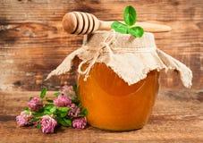 从开花的三叶草的甜蜂蜜 免版税库存图片