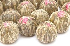 开花的中国茶 免版税库存图片