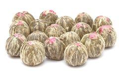 开花的中国茶 免版税图库摄影