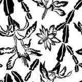 开花的仙人掌庞然大物黑白样式 免版税库存照片