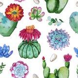 开花的仙人掌植物的水彩手画无缝的样式 向量例证