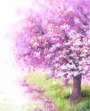 开花的佐仓树 向量例证