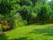 开花的后院风景 库存照片