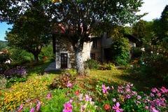 开花的庭院房子 图库摄影