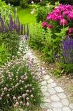 开花的庭院路径 免版税库存照片