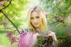 开花的春天树的年轻可爱的妇女 免版税库存图片