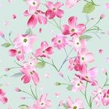 开花的春天花纹花样背景 无缝的时尚印刷品 皇族释放例证