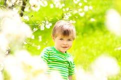 开花的树和绿草背景的小男孩  免版税库存图片