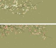 开花的树抽象图画水平的宽横幅  皇族释放例证