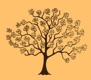 开花的树的剪影 免版税库存图片