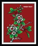 开花的树绘画传染媒介设计艺术 向量例证