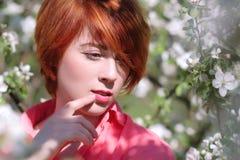 开花的树背景的,在开花的树的春天时尚女孩室外画象,秀丽浪漫妇女红发女孩 免版税库存图片