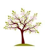 开花的树 库存例证