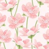 开花的桃红色佐仓木兰无缝的样式 皇族释放例证