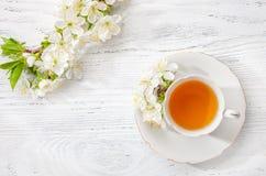开花的樱桃杯绿茶和分支在老木背景的 免版税库存照片