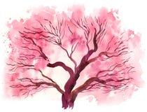 开花的樱桃树 库存例证