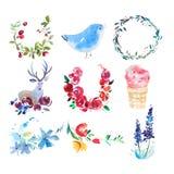画开花的河结构树水彩绕的银行 花、花圈和叶子水彩画绘画 库存照片