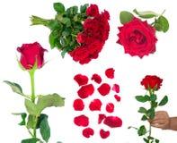 开花的深红玫瑰花束在花瓶的 图库摄影