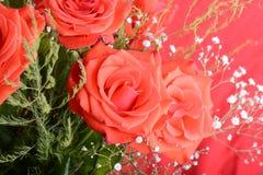 开花的深红玫瑰花束在花瓶,花的关闭的 图库摄影