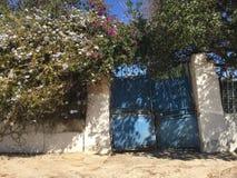 开花的灌木围拢的美丽如画的蓝色生锈的门 免版税库存照片