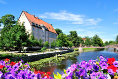 开花的瑞典乌普萨拉 免版税库存照片