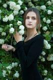 开花的白色荚莲属的植物背景的女孩  库存图片