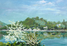 开花的结构树临近湖 免版税库存图片