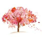 开花的结构树 库存例证