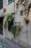 开花的胡同在阿尔比索拉马里纳 免版税库存照片
