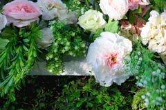 开花的花园 免版税图库摄影