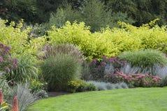 开花的英国庭院 库存照片