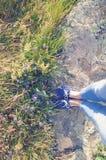 开花的草甸和一条石道路 紫罗兰色花,草 腿、蓝色鹿皮鞋和牛仔裤 库存图片